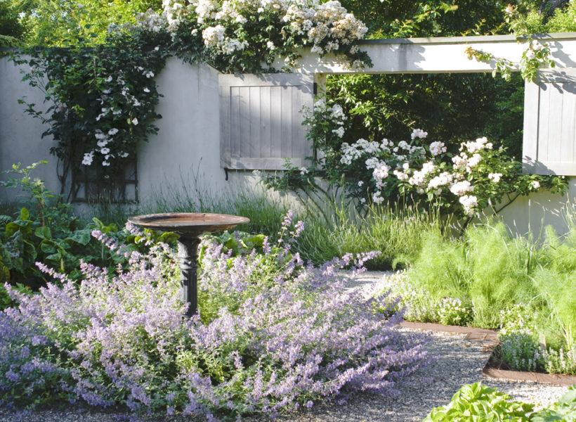 Summer in the garden barefoot contessa - Ina garten garden ...