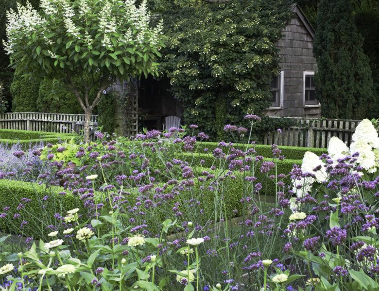 Summer garden madness barefoot contessa for Ina garten summer garden pasta