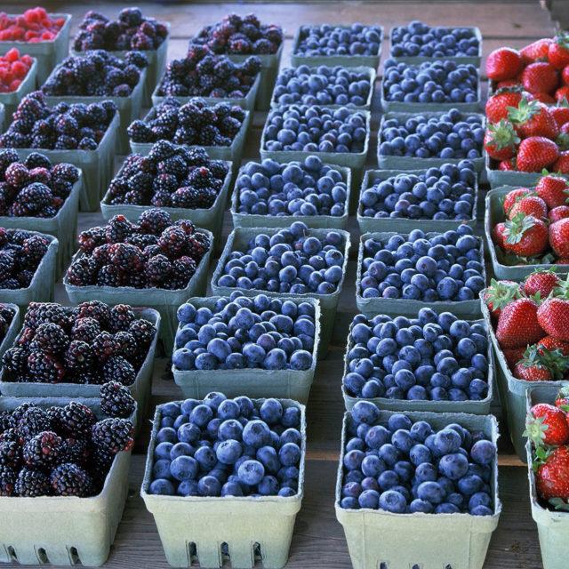 """Résultat de recherche d'images pour """"berries"""""""